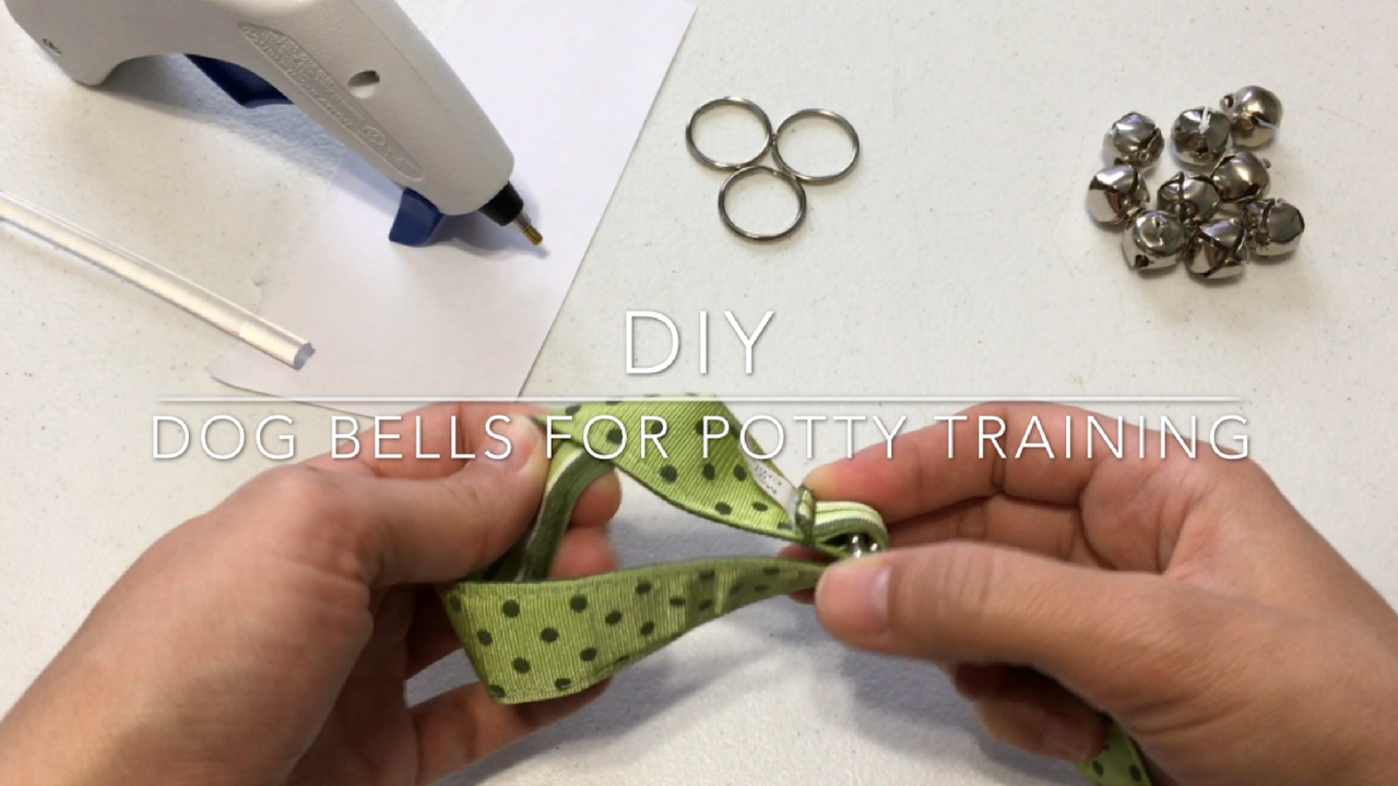How To Make Bells For Dog Training
